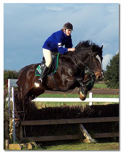 Horse Training - cross country jump training