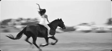 Building confidence - A confident horse rider