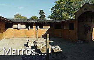 Marros Riding Centre
