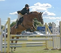 Showjumping - the different show jump types - The Oxer