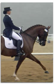 Elegant Dressage In A Double Bridle