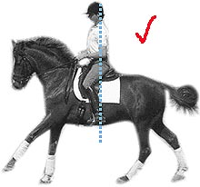 Local Riding » The Classical Seat in Dressage Riding | Local Riding