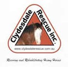 Clydesdale Rescue