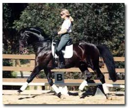 Dressage Secrets from Dressage Judge Charles de Kunffy