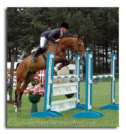 Showjumping The Importance of the Bascule