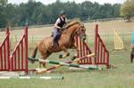 Ingatestone and Blackmore Riding Club
