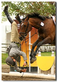 olympic horse jumping falls