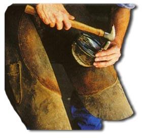 Your Farrier or Blacksmith