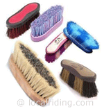 Grooming - Dandy Brush
