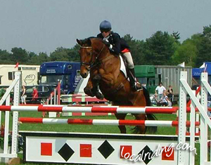 Horse & Rider Show Jumping