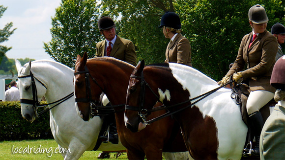 Lightweight Cob Show at Lincolnshire Showground