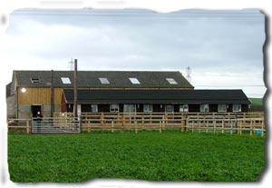 Newlands Equestrian Livery Yard