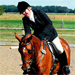 Dressage Riding Photo