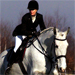 Show Jumping Photo