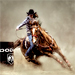 Rodeo Girl Barrel Racing Photo