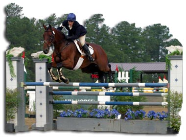 Equestrian Eventing Show jumping Phase