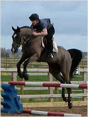 Correct Showjumping riders position