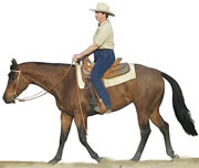 The Jumping Saddle