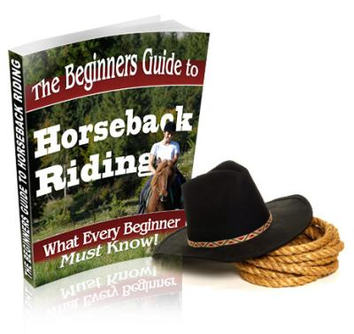 Beginners Guide To Horse Back Riding
