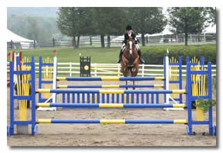 Counting Strides in Jumping a Show Jumping Course