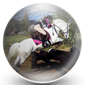 Eventing Cross Country Obstacles Icon
