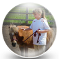 Horse Owner Icon