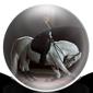 Lippizaner Horse - Classical Dressage