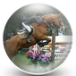 Showjumping icon
