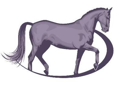 Lincolnshire - The Horse Boutique