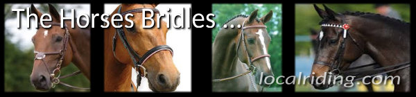 The Horse Bridle in Horse Training & Riding