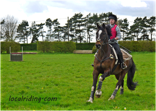 Horse Fitness Training - gear it towards what you expect of your horse
