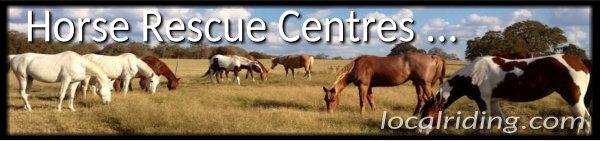 Horse Rescue Centres & Sanctuaries