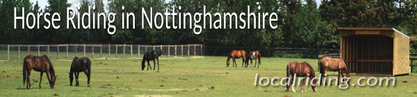 Horse Riding in Nottinghamshire, England