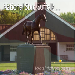 National Stud in Newmarket Suffolk
