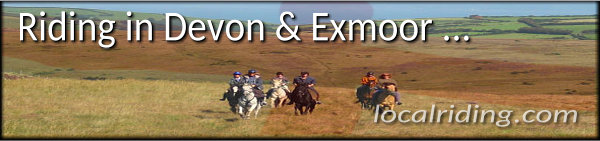 Horse Riding in Devon & Exmoor National Park, England