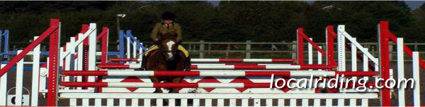 Showjumping Competitions - Counting Strides is important