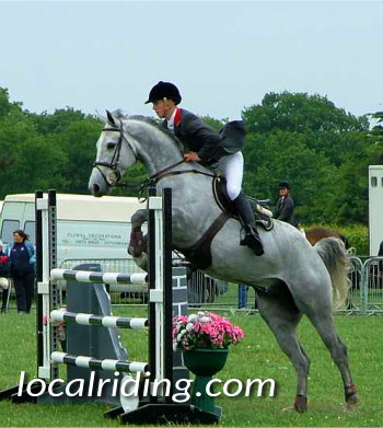 Showjumping - Robert Whittaker on Grey Horse