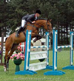 Show jumping tips to develop a good bascule