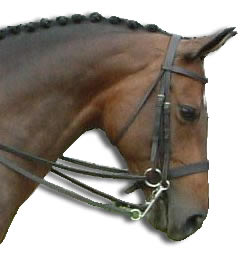 Correctly fitted double bridle