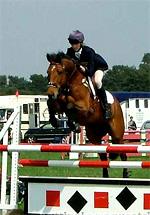 Eventing show jumping phase