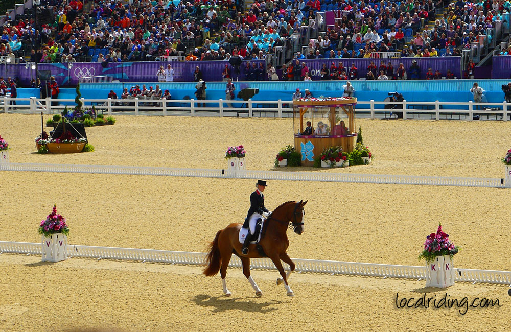 Dressage gallery a selection of our dressage photos